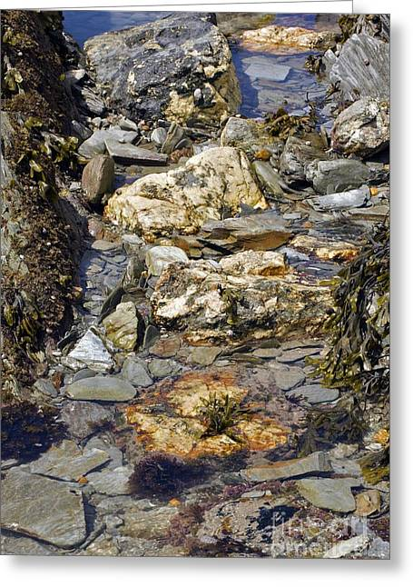 Rocks. Tidal Pool Greeting Cards - Coastal Rock Pools Greeting Card by Dr Keith Wheeler