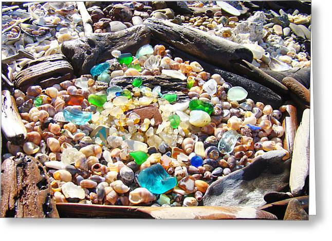 Fossil Art Greeting Cards - Coastal Seaglass art prins Shells Driftwood Greeting Card by Baslee Troutman Coastal Art Prints