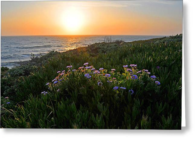 Cambria Greeting Cards - Coastal Sunset Greeting Card by Lynn Bauer