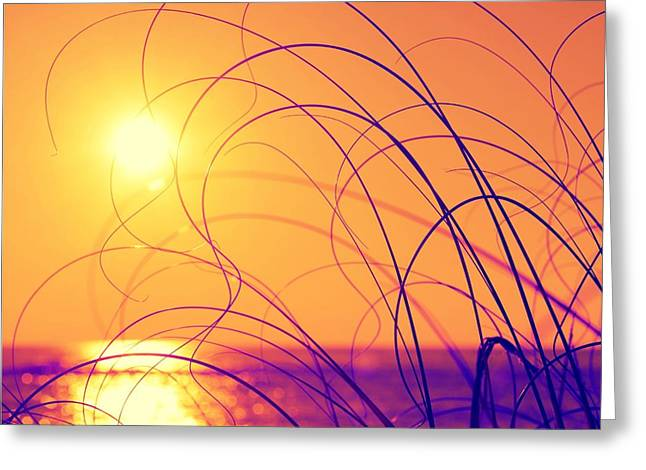 Ocean Photography Greeting Cards - Coastal Vibrance Greeting Card by Kelly Nowak