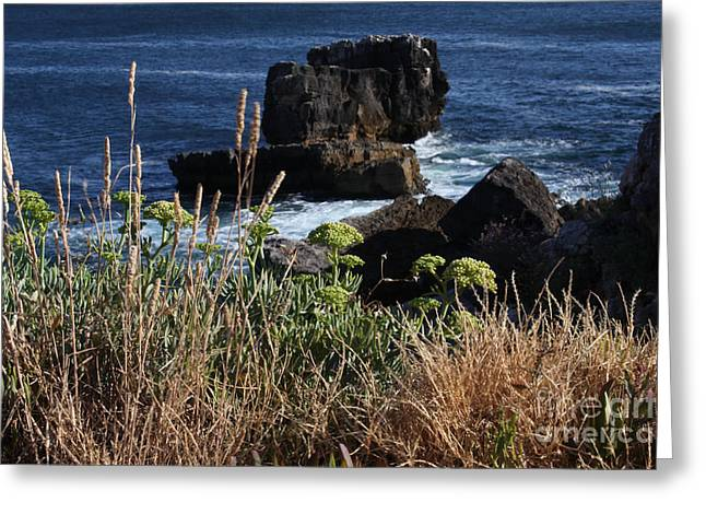 Environemtn Greeting Cards - Coastal view from Cascais  Greeting Card by Darleen Stry