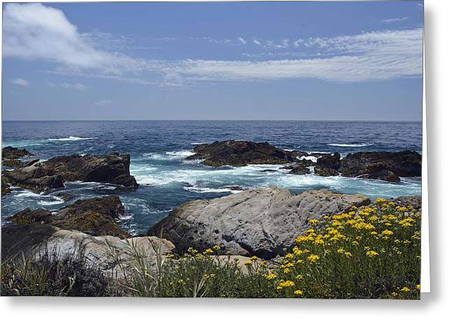Point Lobos Photographs Greeting Cards - Coastline and Flowers in Californias Point Lobos State Natural Reserve Greeting Card by Bruce Gourley