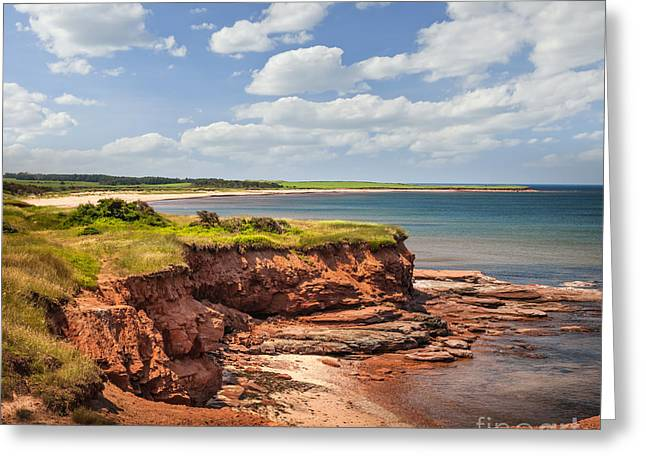 Coastline At East Point  Greeting Card by Elena Elisseeva