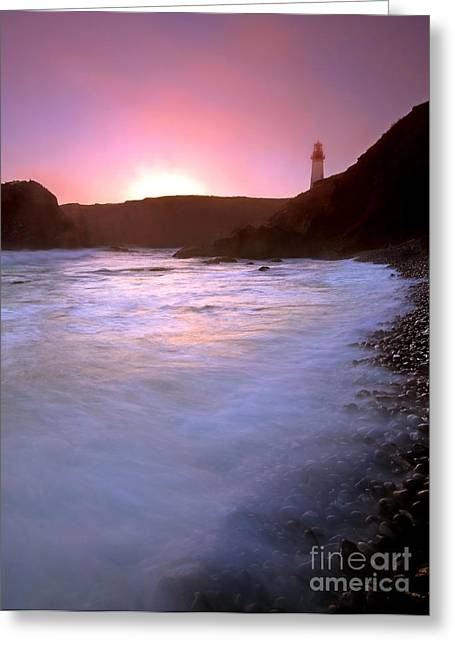 Cobble Beach Sunset Greeting Card by Mike  Dawson