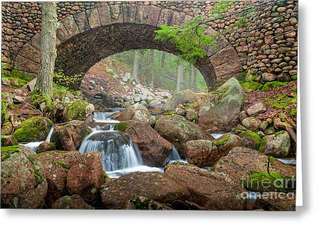 Spring In Maine Greeting Cards - Cobblestone Bridge in Acadia Greeting Card by Susan Cole Kelly