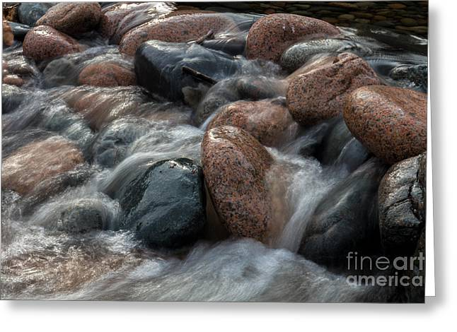 Maine Beach Greeting Cards - Cobblestones Greeting Card by David Rucker