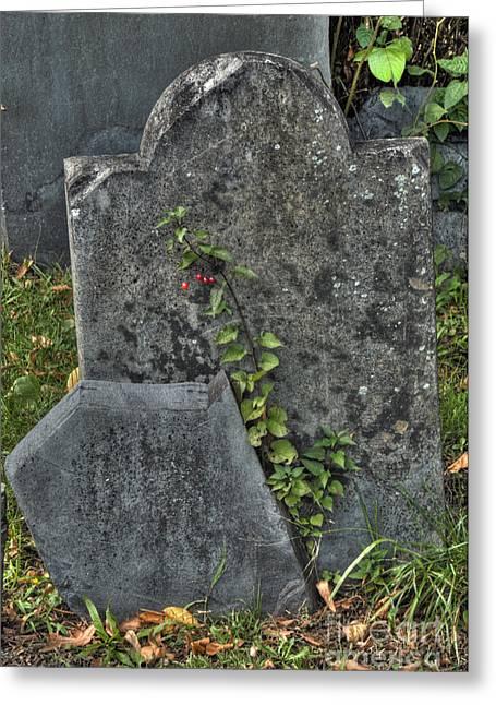 Cobbs Hill Greeting Cards - Cobbs Hill Burial Ground 2 Greeting Card by Deborah Smolinske