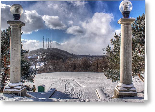 Cobbs Hill Park In Winter Greeting Card by Tim Buisman