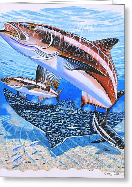 Pez Vela Paintings Greeting Cards - Cobia on Rays Greeting Card by Carey Chen