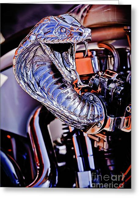 Creative Photography Pictures Greeting Cards - Cobra Breath Greeting Card by Charles Dobbs