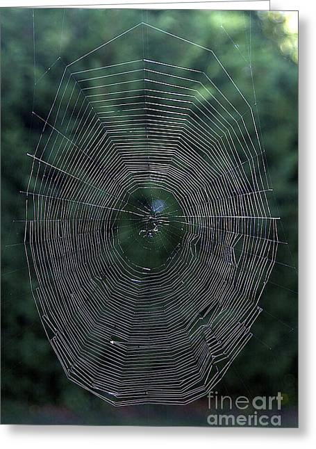 Fragility Photographs Greeting Cards - Cobweb Greeting Card by Bernard Jaubert