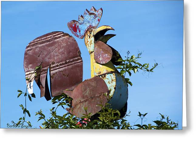 Roost Photographs Greeting Cards - Cock Of The Roost Greeting Card by Barbara Snyder