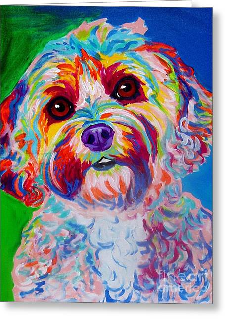 Alicia Vannoy Call Paintings Greeting Cards - Cockapoo - Carmie Greeting Card by Alicia VanNoy Call