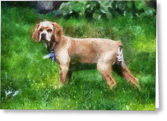 Spaniel Greeting Cards - Cocker Spaniel Outside 07 Greeting Card by Thomas Woolworth