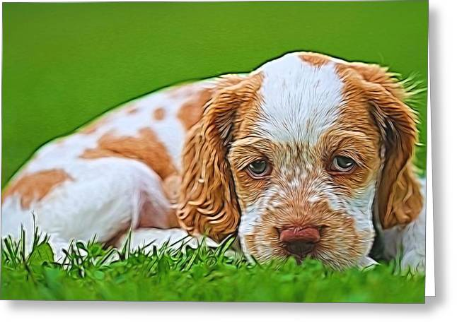 Puppy Dog Eyes Greeting Cards - Cocker Spaniel Puppy In Grass Greeting Card by Dan Sproul