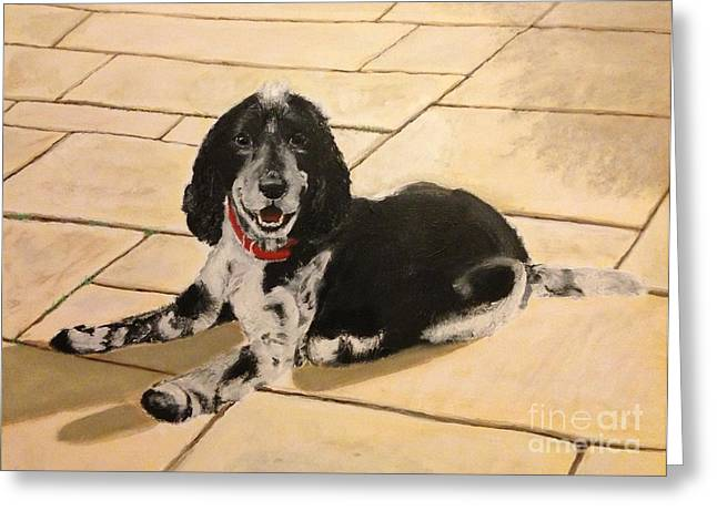 Recently Sold -  - Working Dog Greeting Cards - Cocker Spaniel Greeting Card by R Tidwell