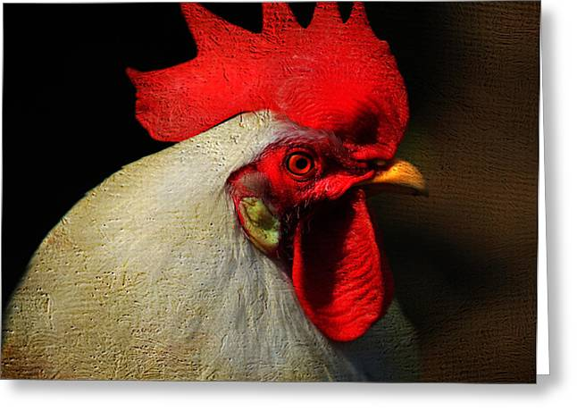 Clucking Greeting Cards - Cockerel Greeting Card by Jenny Rainbow