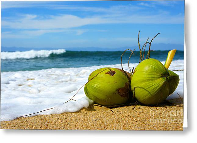 Beach Scenery Greeting Cards - Coconut Greeting Card by Aged Pixel