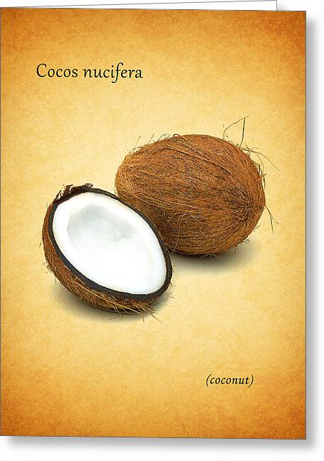 Citrus Leaf Greeting Cards - Coconut Greeting Card by Mark Rogan