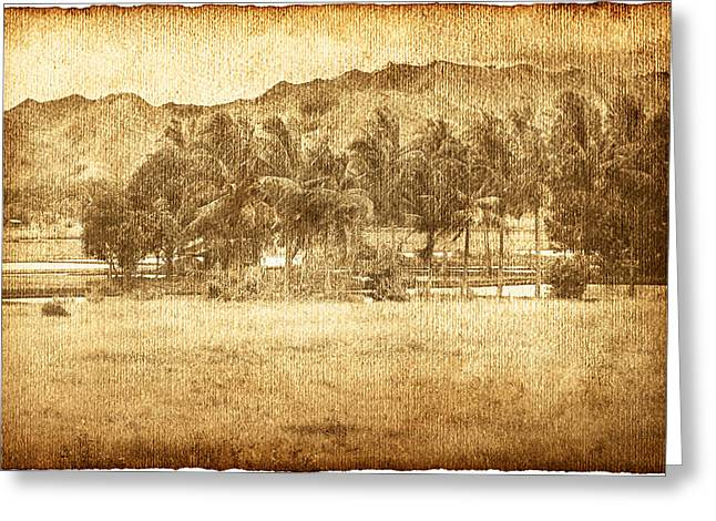 Worn In Greeting Cards - Coconut Palms In Valley Greeting Card by Skip Nall