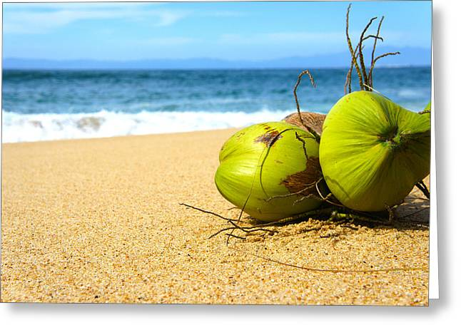 Coconut Palm Tree Greeting Cards - Coconuts Greeting Card by Aged Pixel