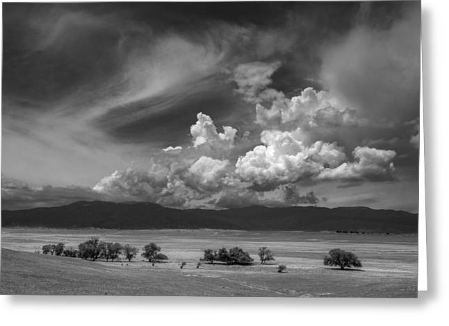 Big Sky Greeting Cards - Coda Greeting Card by Peter Tellone