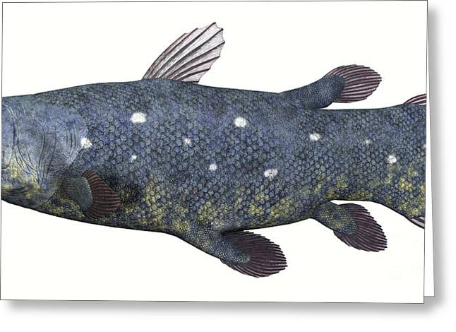 Fish Digital Art Greeting Cards - Coelacanth Fish Against White Greeting Card by Corey Ford