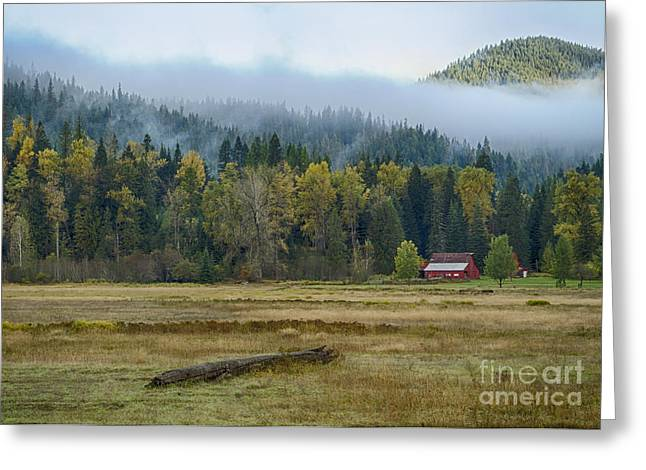 Foggy Day Greeting Cards - Coeur d Alene River Farm Greeting Card by Idaho Scenic Images Linda Lantzy