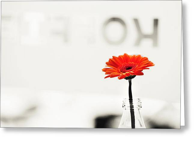 Fine Bottle Greeting Cards - Coffee and Gerbera 1. Utrecht Greeting Card by Jenny Rainbow