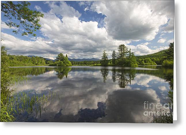 Coffin Greeting Cards - Coffin Pond - Sugar Hill New Hampshire Greeting Card by Erin Paul Donovan