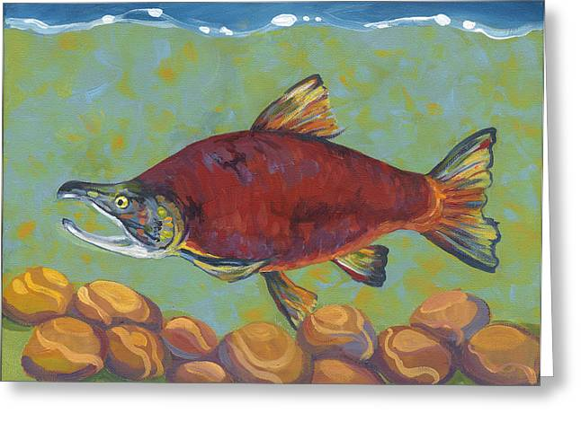 Coho Salmon Greeting Cards - Coho Salmon Greeting Card by Peggy Wilson