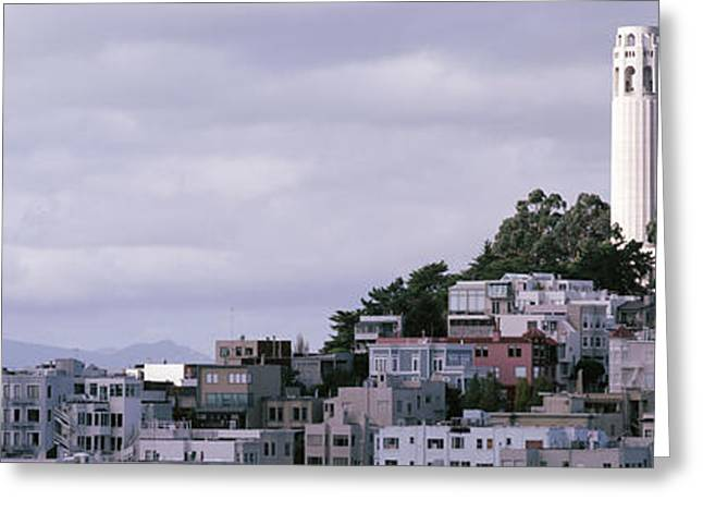 Towering Tree Greeting Cards - Coit Tower On Telegraph Hill, San Greeting Card by Panoramic Images