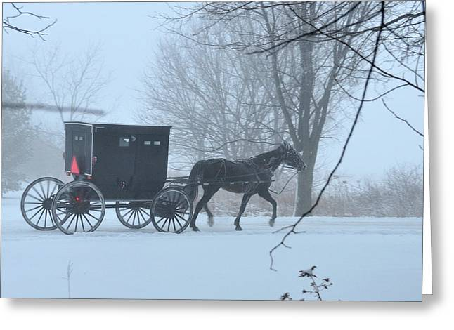 Indiana Scenes Greeting Cards - Cold Amish Morning Greeting Card by David Arment