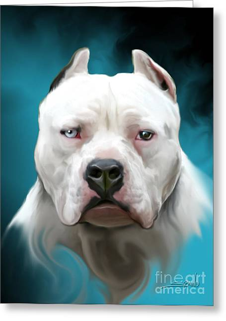 Bully Digital Greeting Cards - Cold as Ice- Pit Bull by Spano Greeting Card by Michael Spano
