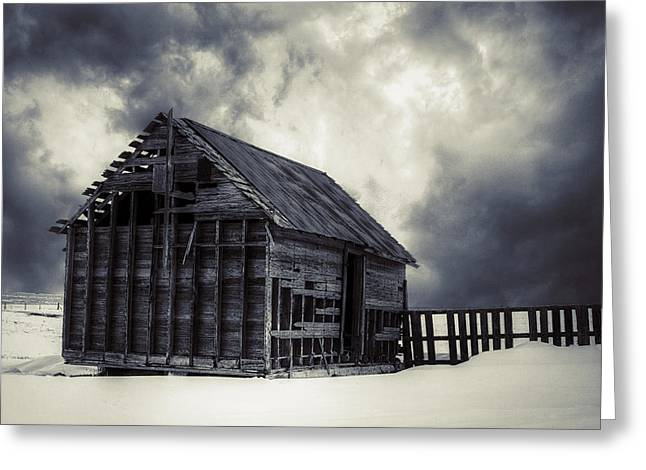 Snowpocalypse Greeting Cards - Cold - BW Greeting Card by Thomas Zimmerman