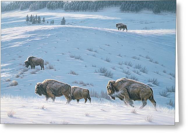 Wildlife Greeting Cards - Cold Day at Lamar Greeting Card by Paul Krapf