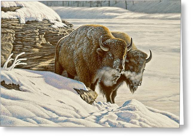 Buffalo Paintings Greeting Cards - Cold day at Soda Butte Greeting Card by Paul Krapf