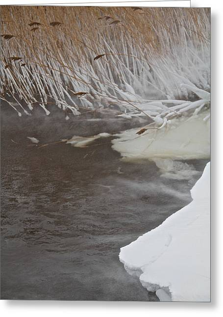 Drifting Snow Photographs Greeting Cards - Cold Fills The Void Greeting Card by Odd Jeppesen