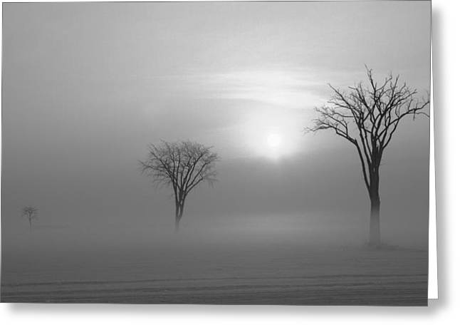 Mirabel Greeting Cards - Cold Greeting Card by Luc Parent