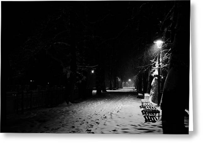 Snowy Night Greeting Cards - Cold night in a park Greeting Card by Vedran Milic