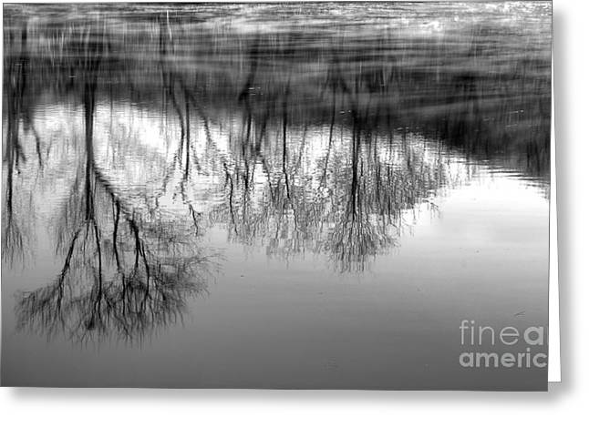 River Scenes Greeting Cards - Cold Reflection Greeting Card by Michael Eingle
