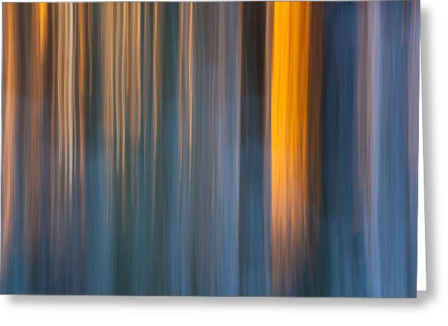 Blurred Motion Greeting Cards - Cold shadows Greeting Card by Davorin Mance
