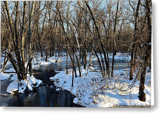 Kingston Greeting Cards - Cold Greeting Card by Steven Richman