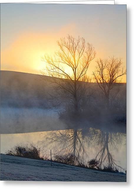 Cold Morning Sun Greeting Cards - Cold sunrise Greeting Card by Alexey Stiop
