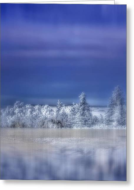 Snow-covered Landscape Greeting Cards - Cold Winter Day Greeting Card by Ellen Heaverlo