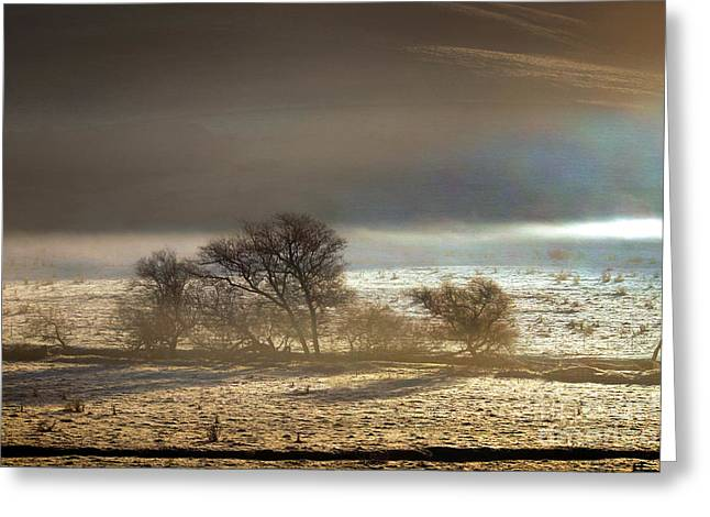 Bucolic Scenes Digital Art Greeting Cards - Cold Wintery Morning over the Valley in Sonoma County Greeting Card by Wernher Krutein