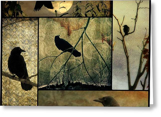 American Crow Greeting Cards - Collage Of Five Crows Greeting Card by Gothicolors Donna Snyder
