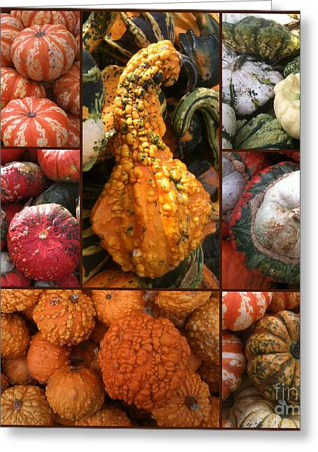 Farm Stand Greeting Cards - Collage - Pumpkins - Gourds - Elena Yakubovich Greeting Card by Elena Yakubovich