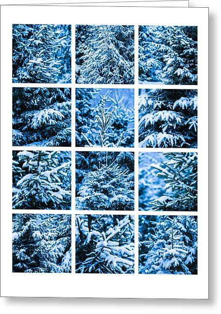 Snowstorm Greeting Cards - Collage Winter Snow Christmas Tree Greeting Card by Alexander Senin