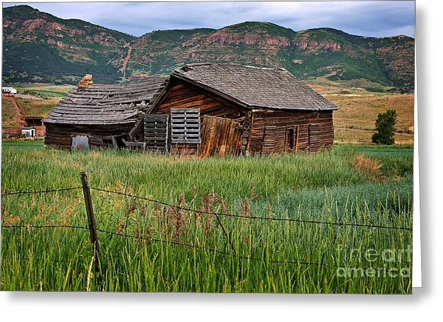 Log Cabin Photographs Greeting Cards - Collapsed Log House in Utah Greeting Card by Louise Heusinkveld